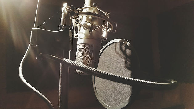 Hiring Professional Voice Talent For Videos